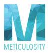 meticulosity